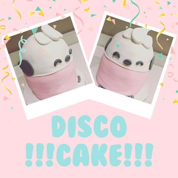 Snugglebuds Disco galah cake