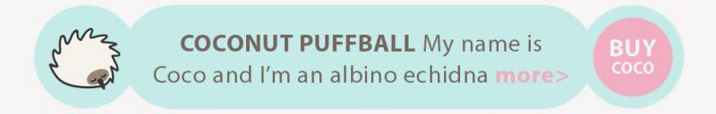 Little Aussie Snugglebuds - Coconut Puffball echidna
