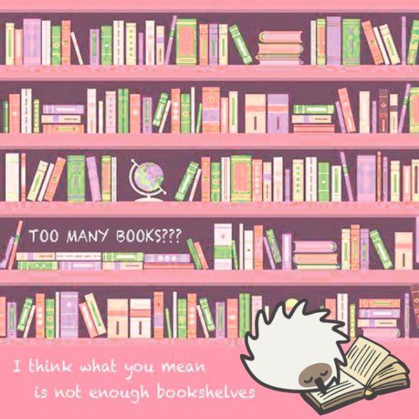 Snugglebuds Coconut Puffball echidna illustration
